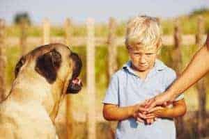 Keine Angst vor Tieren dank Hypnose